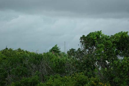 Uitzicht vanaf Saliña Harbour View