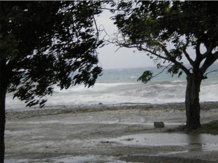 Joost Schrier - De zee bij Marie Pompoen