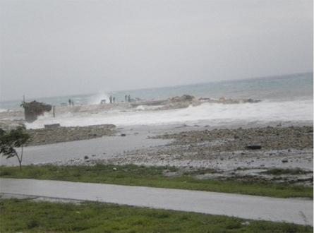 Joost Schrier - Restanten van het strand bij Marie Pompoen