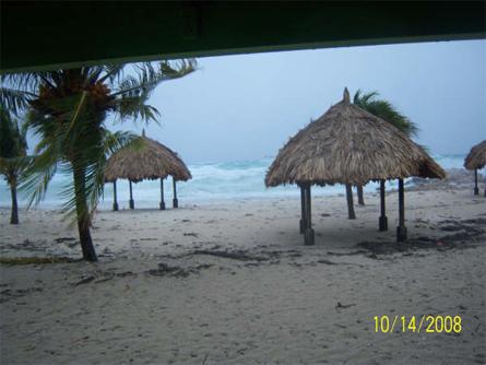 Sherilon, Marcel en Joyce - Tot nu toe zijn de palmbomen op Daaibooi blijven staan