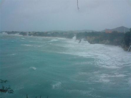 Wouter de Leeuw - Playa Forti