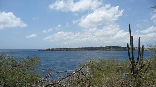caracasbay