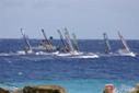 windsurfdemonstratie