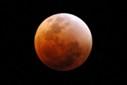 rode volle maan