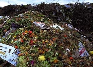 Food- waste1