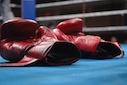boksen kickboksen MMA handschoenen