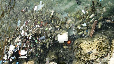 Afval in Caracasbaai