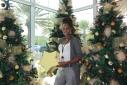 Versgeperst.com Versgeperst NIEUWS livemuziek kerstperiode Hato Curaçao  Potret pa Prensa